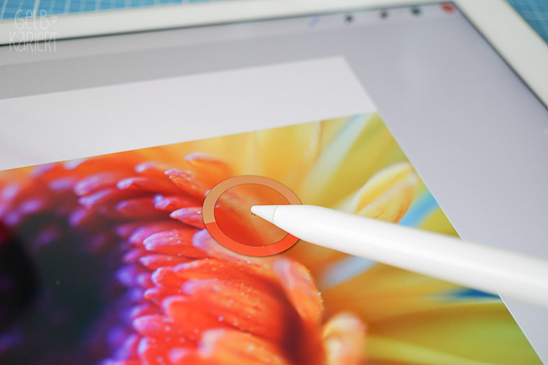 Anleitung Farbpalette für Procreate App erstellen, Tutorial IPad Pro, Handlettering, Lettering, Digital Lettering, Procreate Tutorial deutsch, Fotoanleitung, Gelbkariert Blog